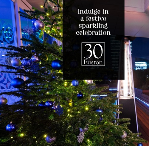 Have A Merry Sparkling Christmas Party 30 Euston Square - Best Venues London
